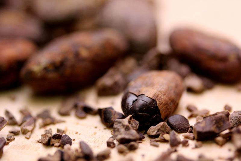 El cacao de Panama